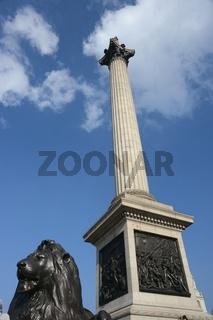 DSC_1570.JPG Nelsons column and lion London