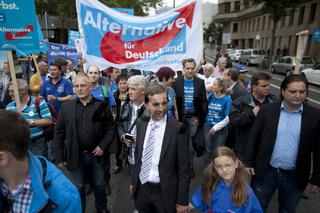Demo der AfD in Duesseldorf