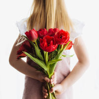 Small girl holding bouquet of red tulip flowers. Concept for greeting card