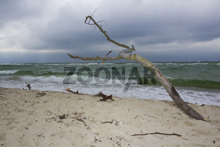 Weststrand Fischland Darss - Ostsee