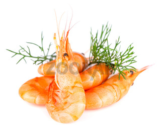 Shrimp with dill, isolated on white.