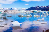 Icebergs and ice floes