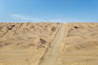 climbing lane on desert wilderness