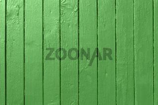 gruene Holzwand