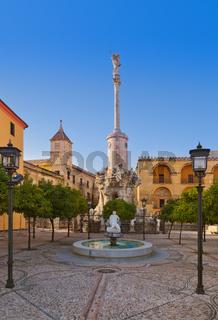 Square of Triumph of San Rafael in Cordoba Spain