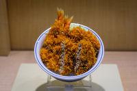 fake, plastic food in asian restaurant window, fried pork -