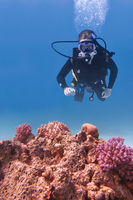 Young diving man swims in blue sea with coral