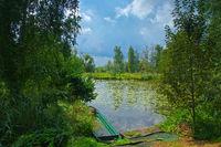 Kleiner Spreewald im Sommer - small Spree Forest in summer, Brandenburg