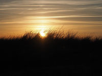 Sunset over a dune with dune grass