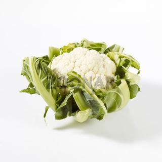 Produktaufnahme Blumenkohl auf weißem Untergrund