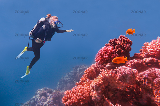 Woman diving in blue sea near coral reef