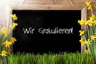 Sunny Spring Narcissus, Chalkboard, Wir Gratulieren Means Congratulations