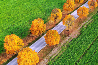 All in the autumn From above