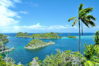 Fam Island Top view  Star Lagoon Raja Ampat Indonesia