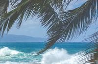 Hawaii North Shore Waves
