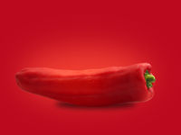 An organic pointed pepper on a red background
