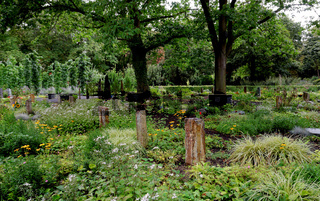 Bestattungsgärten auf dem Melatenfriedhof in Köln