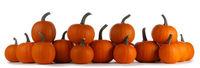 Many orange pumpkins isolated