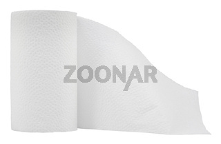 Isolated Toilet Paper