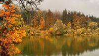 See im Naturpark Obere Donau