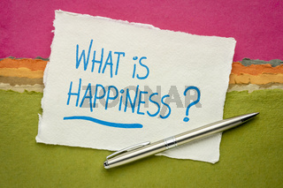 What is happiness? Inspirational question.