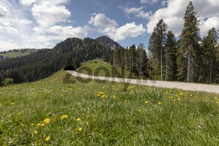 Hiking trail to the Fockenstein peak in the bavarian alps, Germany