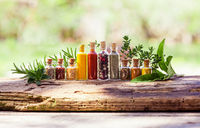 Row of bottles with spices and fresh herbs behind
