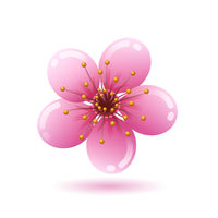 Beautiful pink sakura flower icon on white background, Japan cherry blossom, vector illustration.