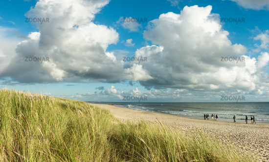 Beach sand panorama with group of people walking at coastline. Blue sky and dramatic clouds at waterfront in soft evening sunset light. Hvidbjerg Strand, Blavand, North Sea, Denmark.