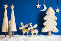Christmas Tree, Moose, Snow, Moon, Copy Space