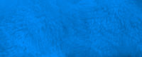 Blue fur background close up view. Banner