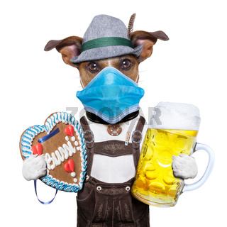 bavarian beer dog in covid 19 time