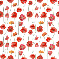 Seamless floral design with Red Poppy Flowers for background