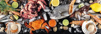 Fish and seafood panorama, a flatlay top shot. Sea bream. shrimps, crab, sardines, squid, octopus and scallops on ice with lemons and caviar