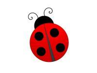 very beautiful ladybug on white background - 3d rendering