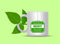 Mug with mint leaves on a white background. Vector