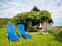 Small hut and lounge chairs at a vineyard in Burgenland