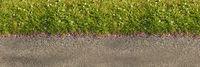 Gras auf Wiese als Linie von oben als Natur Hintergrund Textur