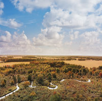 Beautiful countryside with a small river and autumn trees. Aerial landscape.