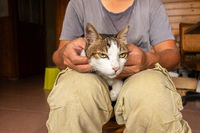 man hold his cat on his thighs