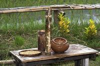 Instrumente zur Bestimmung der Qualität von Saatgut für Reisanbau, Luang Prabang, Laos