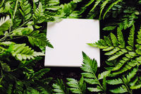 Blank card on green grass background, branding