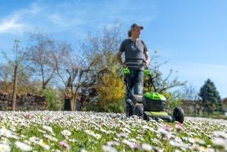 Wiese mit Gänseblümchen vor blauem Himmel mit unscharfem Mann,  Rasenmäher und Hintergrund
