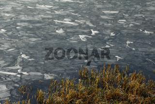 Ufer des zugefrorenen Hintersee