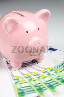 Hundred Euros next to a pink piggy bank