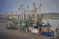 Krabbenfänger im Hafen