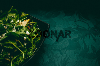 Green salad with basil and white garlic cream sauce for healthy diet, food delivery service and order online