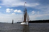 No. 5 Elbe