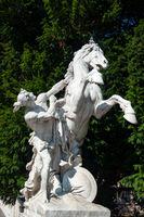 Horse sculpture in Hofburg, Vienna