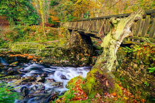 Cascades under wooden bridge on mountain stream, with mossy rocks in Tollymore Forest Park
